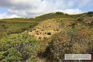 Il crinale di collina destinato a scomparire secondo uno studio di Legambiente Arcipelago Toscano.