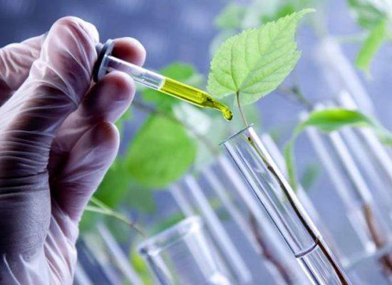 chimica-ambiente-siena-toscana-ambiente