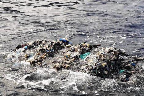 Un'ecoballa di spazzatura riaffiorata in superficie lo scorso agosto (foto Legambiente)