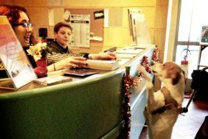 Fucecchio_biblioteca pet-friendly_3