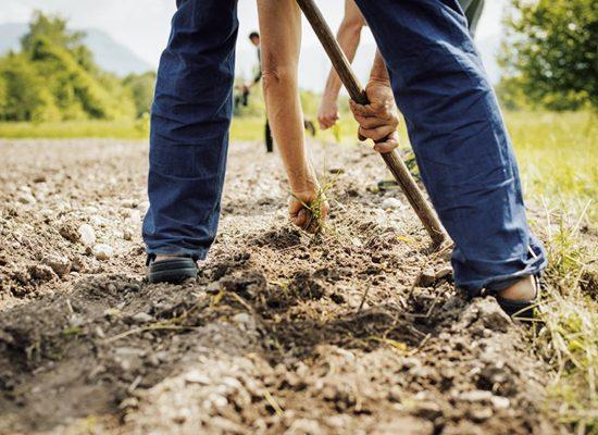 agricoltura-biodinamica-firenze-toscana-ambiente