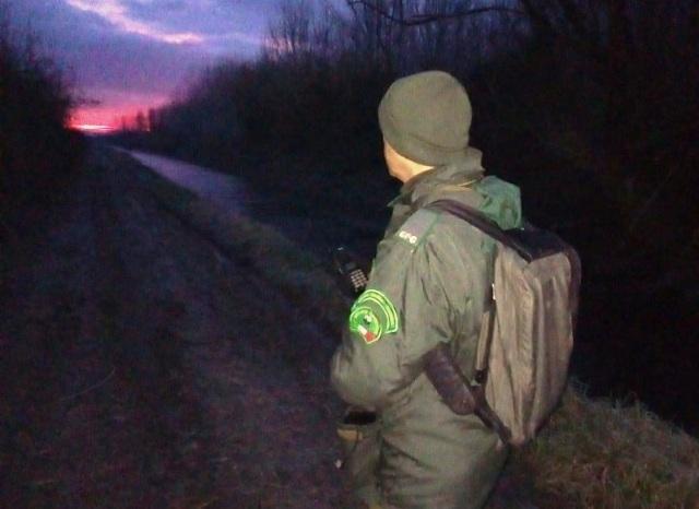 Un appostamento all'alba di una Guardia giurata del Wwf Toscana