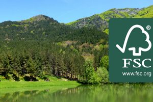 rincine-foreste-montagne-fiorentine-toscana-ambiente