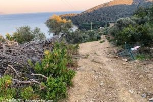 Galenzana-Capo Poro, allargamento di un sentiero pedonale in area protetta (foto Legambiente Arcipelago Toscano)