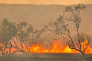 incendi-e-cambiamenti-climatici-toscana-ambiente