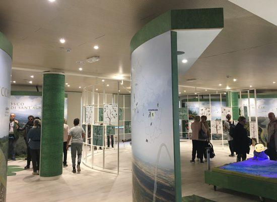 Foto da pagina Facebook del Museo.
