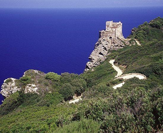 La rocca sul mare (foto Parco Nazionale Arcipelago Toscano)