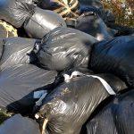 Indagati, rifiuti, discarica, abbandono, prato, Toscana, ambiente.