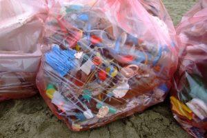 pulizia-spiaggia-Feniglia-frammenti