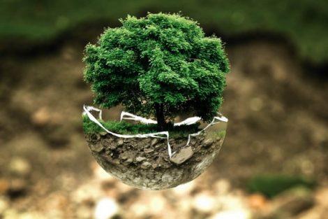 Green Week_Unione europea