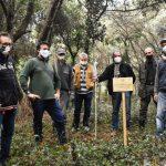 San Rossore-alberi-rifiuti