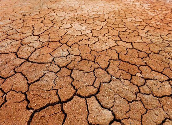 cambiamenti-climatici-scuola-Pisa-Toscana-ambiente