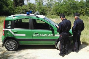 Impruneta, Carabinieri forestali, Toscana ambiente.