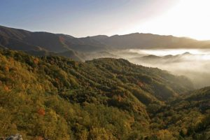 Oltreterra. parco delle Foreste Casentinesi, Montagna-Toscana, ambiente.