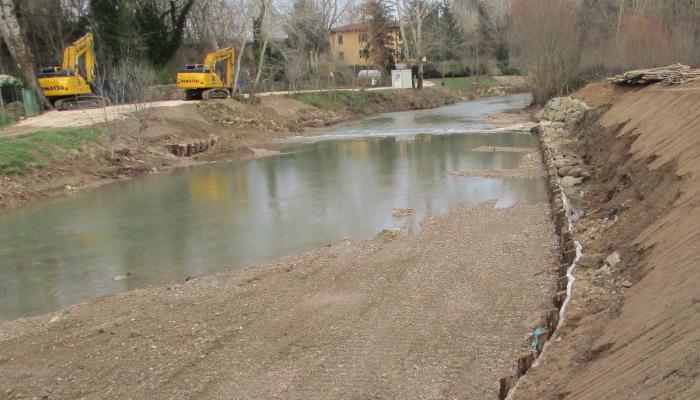 GrIG, gruppo d'Intervento Giuridico onlus, fiume Elsa, Poggibonsi Siena, Toscana Ambiente, taglio alberi e vegetazione riparia.