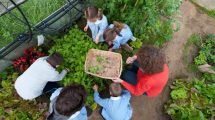 Centomila orti in Toscana, Barberino tavarnelle, Toscana ambiente.