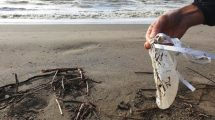 palloncino-spiaggia-plastica