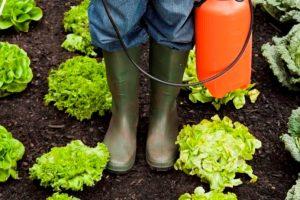 pesticidi-agricoltura-Legambiente