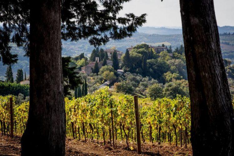 tenuta-Montepaldi-Chianti