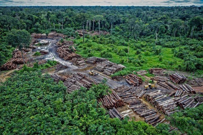 deforestazione-Brasile-Amazzonia