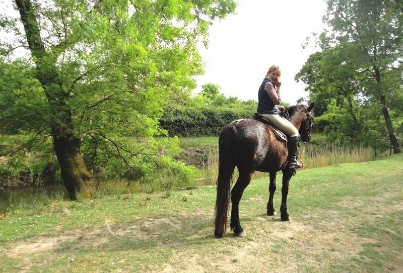 a cavallo_nel parco