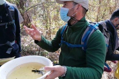 La guida ambientale Giacomo Grasseschi parla dei tritoni