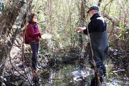 L'erpetologo Marco Zuffi dell'Università di Pisa