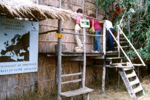 Oasi WWF Orbetello