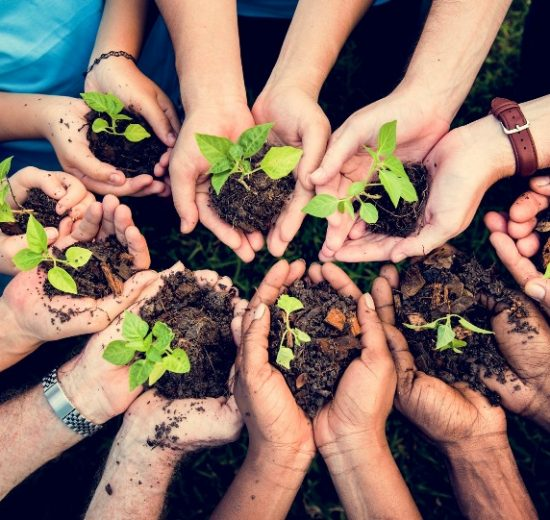 Unifi ateneo sostenibile