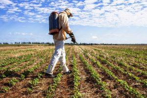 pesticidi-glifosate-campi