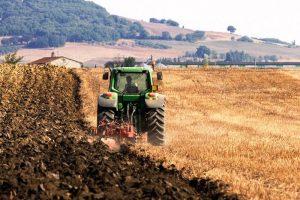 trattore-campo-biologico