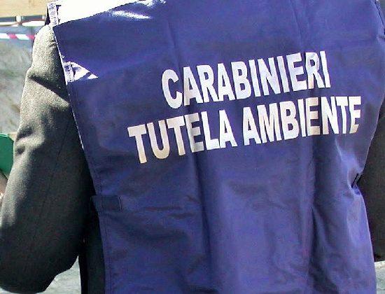 Carabinieri-tutela-ambiente