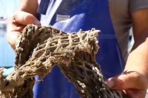pesca-sostenibile-Toscana