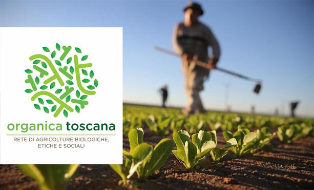 Welfare vede e agricoltura sociale e biologica in Toscana per Coldiretti, ambiente.
