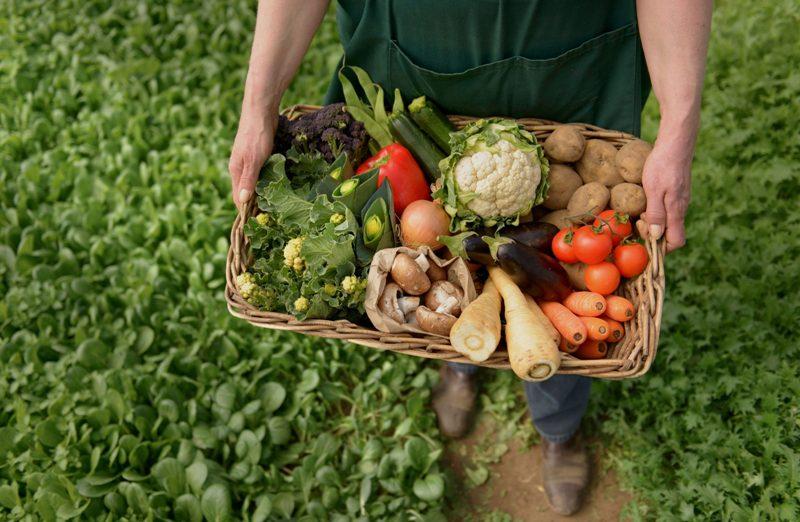 prodotti-biologici-agricoltura