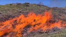 Incendi boschivi, dall'Ateneo di Firenze un'app che previene i rischi (video) - La tecnologia è utile per mappare i combustibili delle foreste.