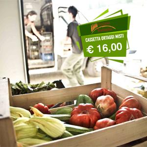 1-ortaggi-Toscana-biologica.jpg