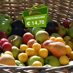 3-frutta-Toscana-biologica.jpg