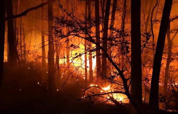 Fuoco e fiamme in Toscana, circa 400 ettari di bosco andati in fumo ad agosto 2021.