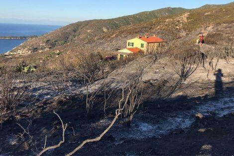 incendio Elba Toscana-ambiente