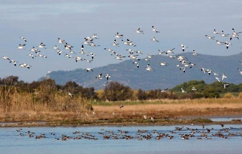 Biodiversità regionale_Toscana-ambiente