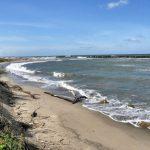Spiaggia San Rossore Toscana-Ambiente