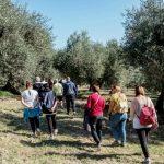 oleoturismo camminata Toscana-Ambiente